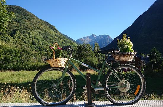 Montarto Bicicleta i Pic