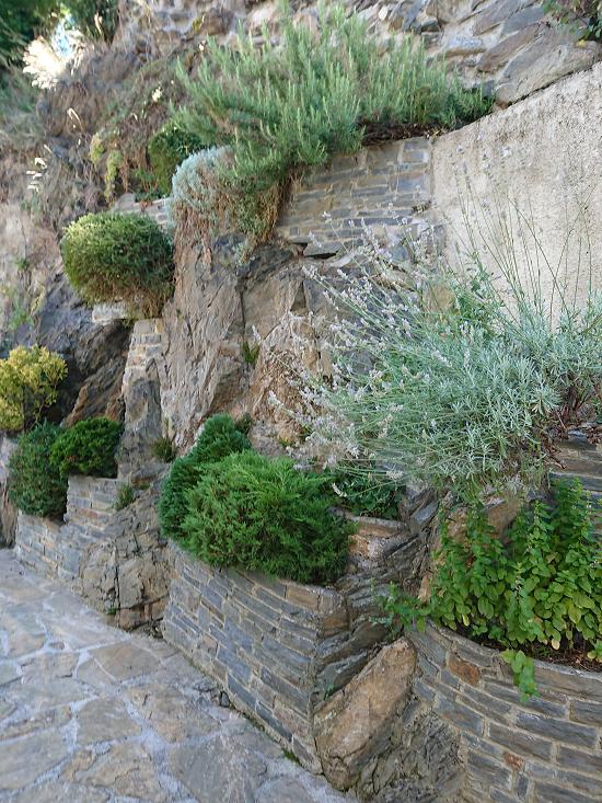 Jardín vertical en Casa de Vielha